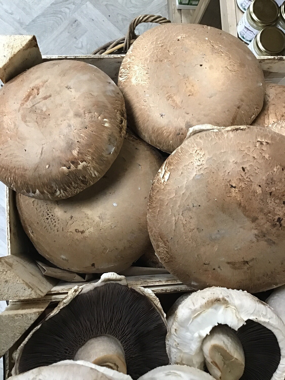 Portobello Mushrooms 250g