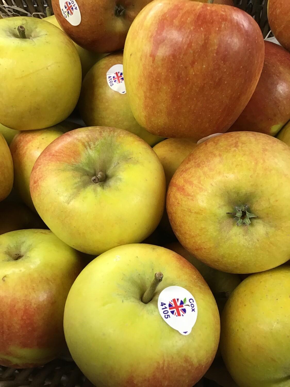 English Cox Apple