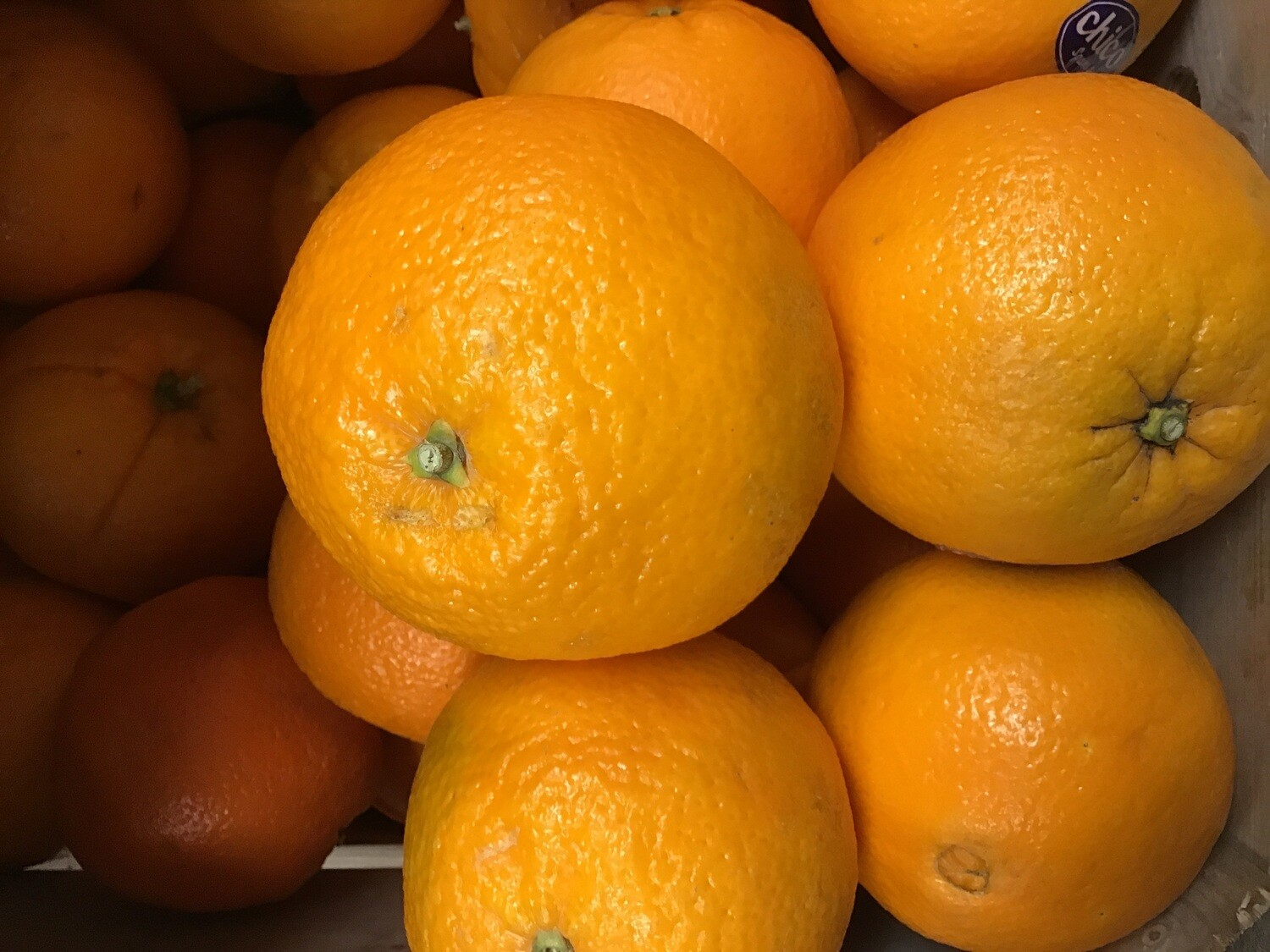 Oranges. Large Navels.  2 pack