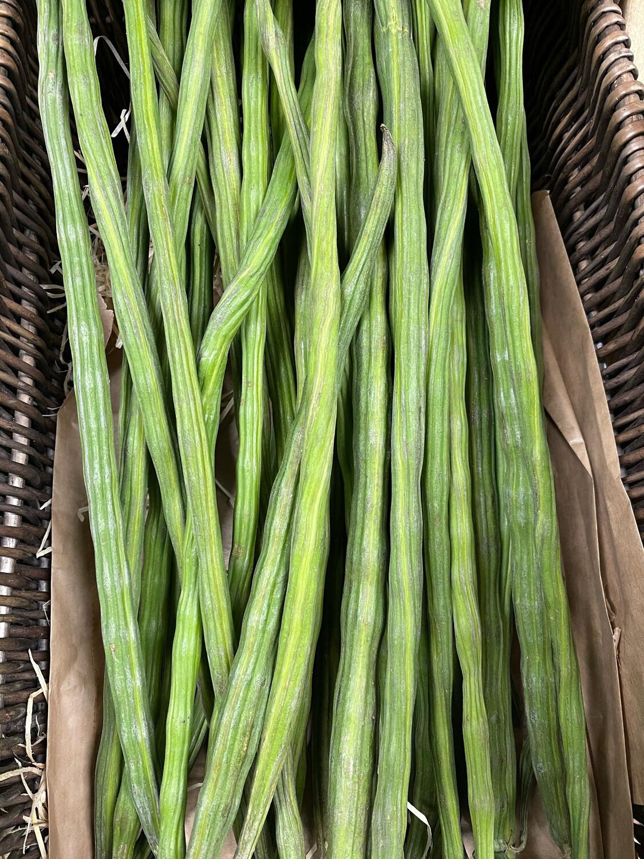 Drumstick Beans- 6 Sticks