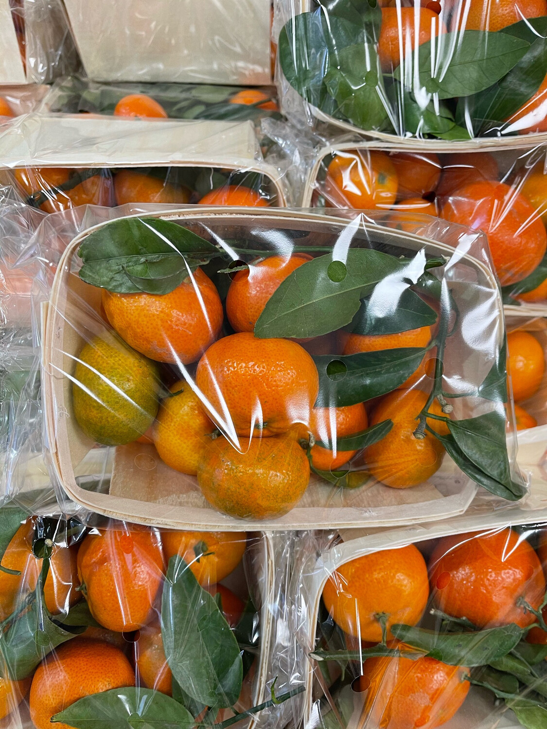 Shoebox Clementines. 2kg.  Approx. 35 fruits