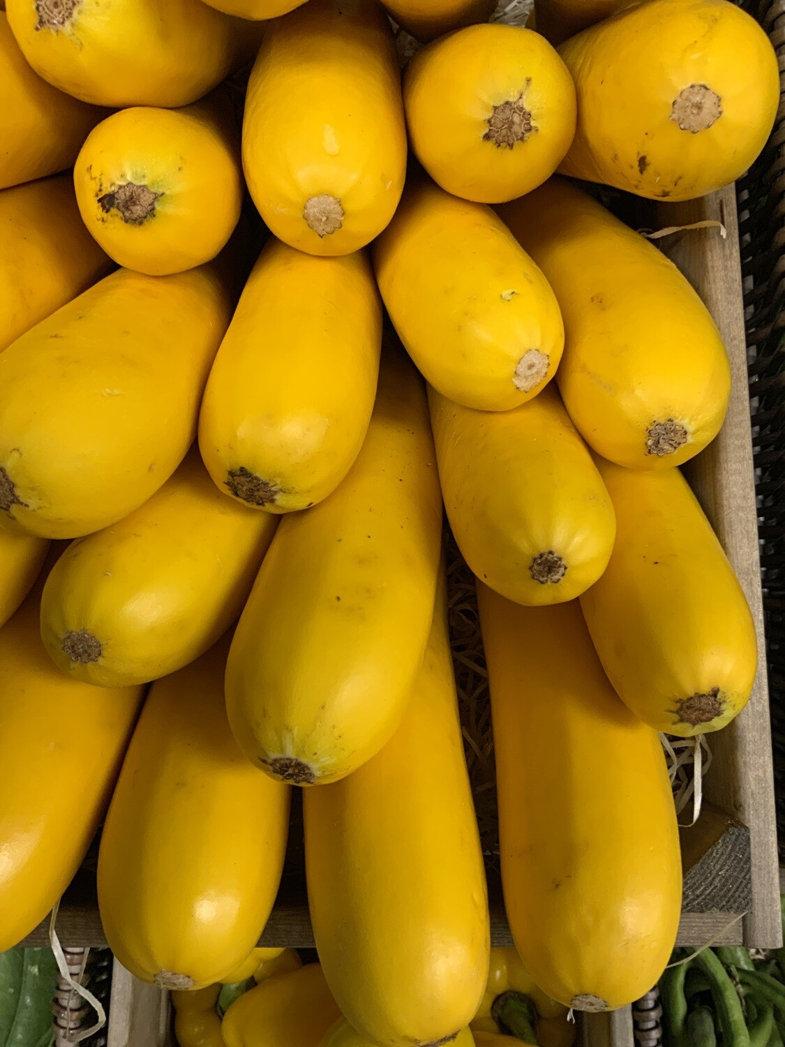 Yellow Courgettes . Each