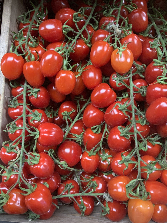 Tomatoes San Manzano.  Netherlands.    450g