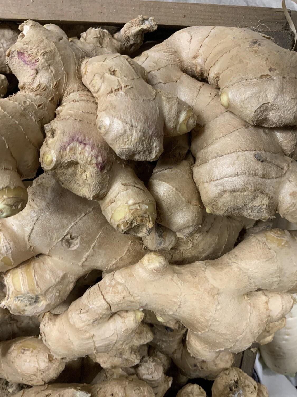 Root Ginger.    100g