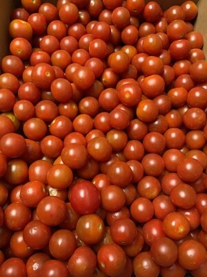 Cherry Tomatoes.    Per pound/half kilo