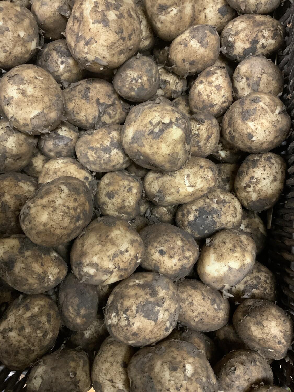 Northumbrian New Potatoes   500g
