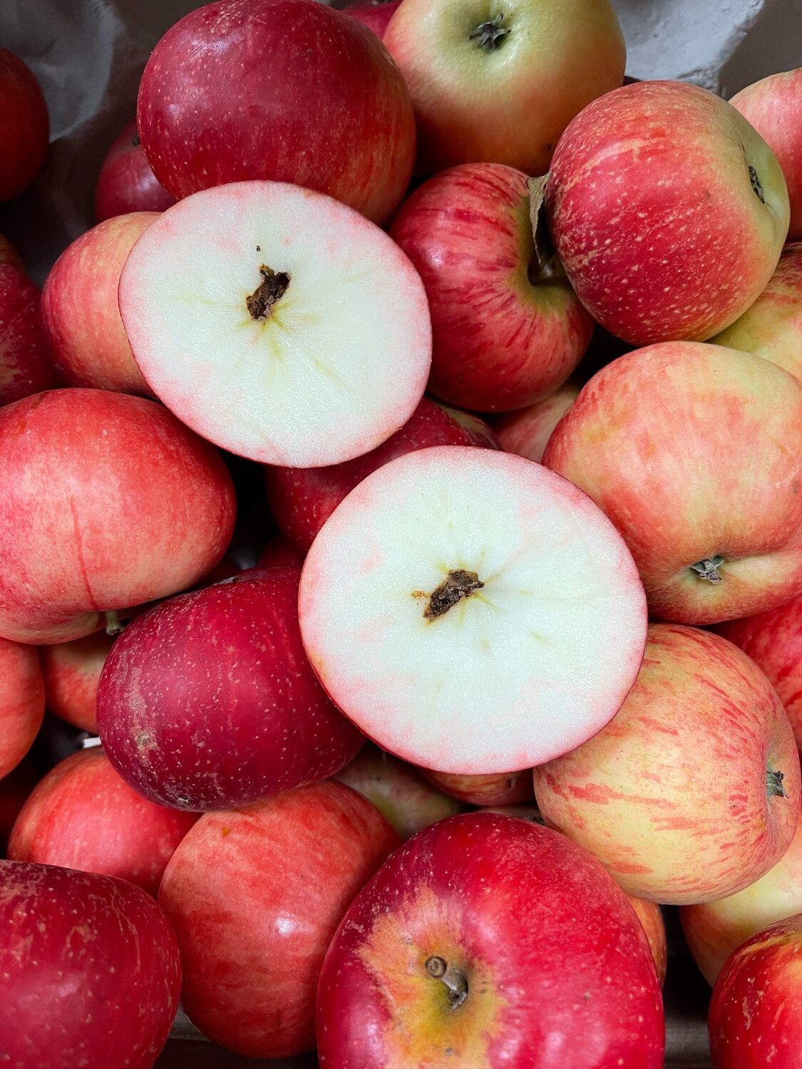 English Discovery Apples 500g