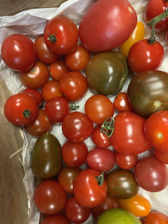 Heritage Mixed Tomatoes.   250g.   English