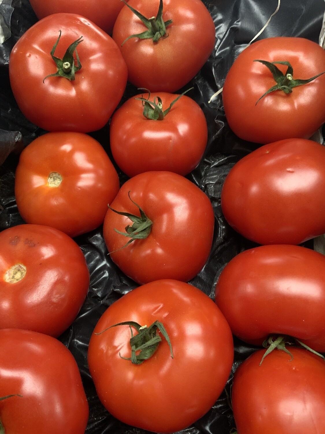 Beef Tomatoes.    500g
