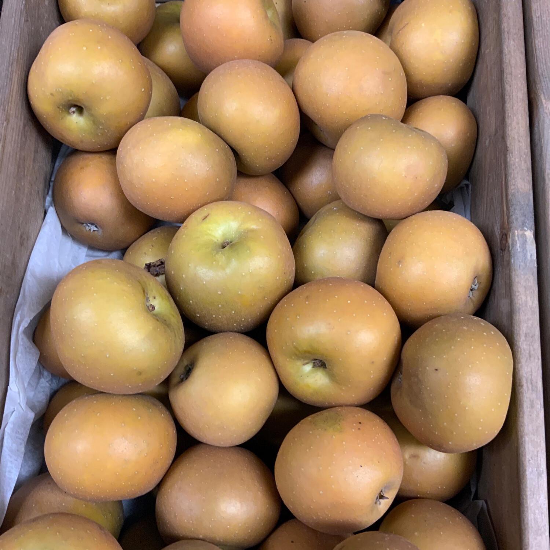 English Russet Apple-500g