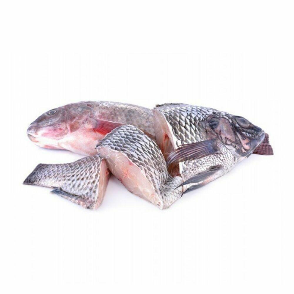 Telapiya Fish Processed
