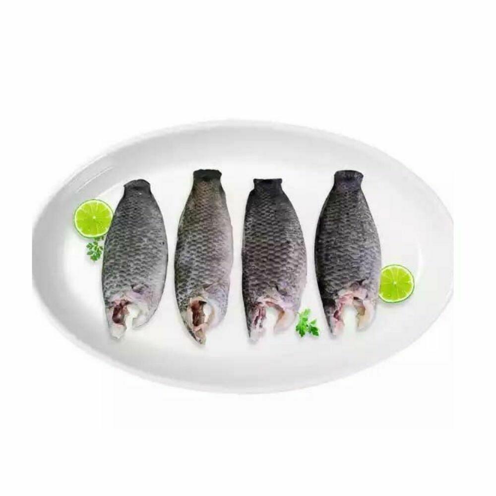 Koi Fish Processed