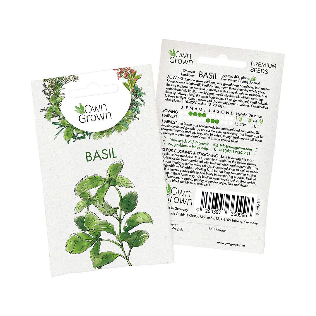 Basil Seeds (Germany)