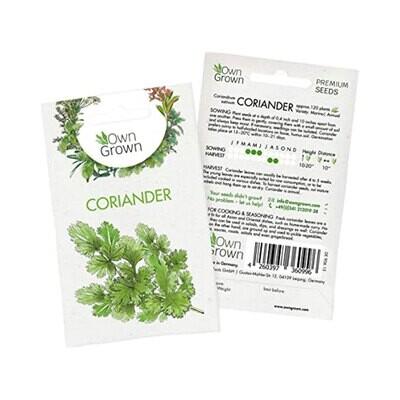 Coriander Seeds (Germany)