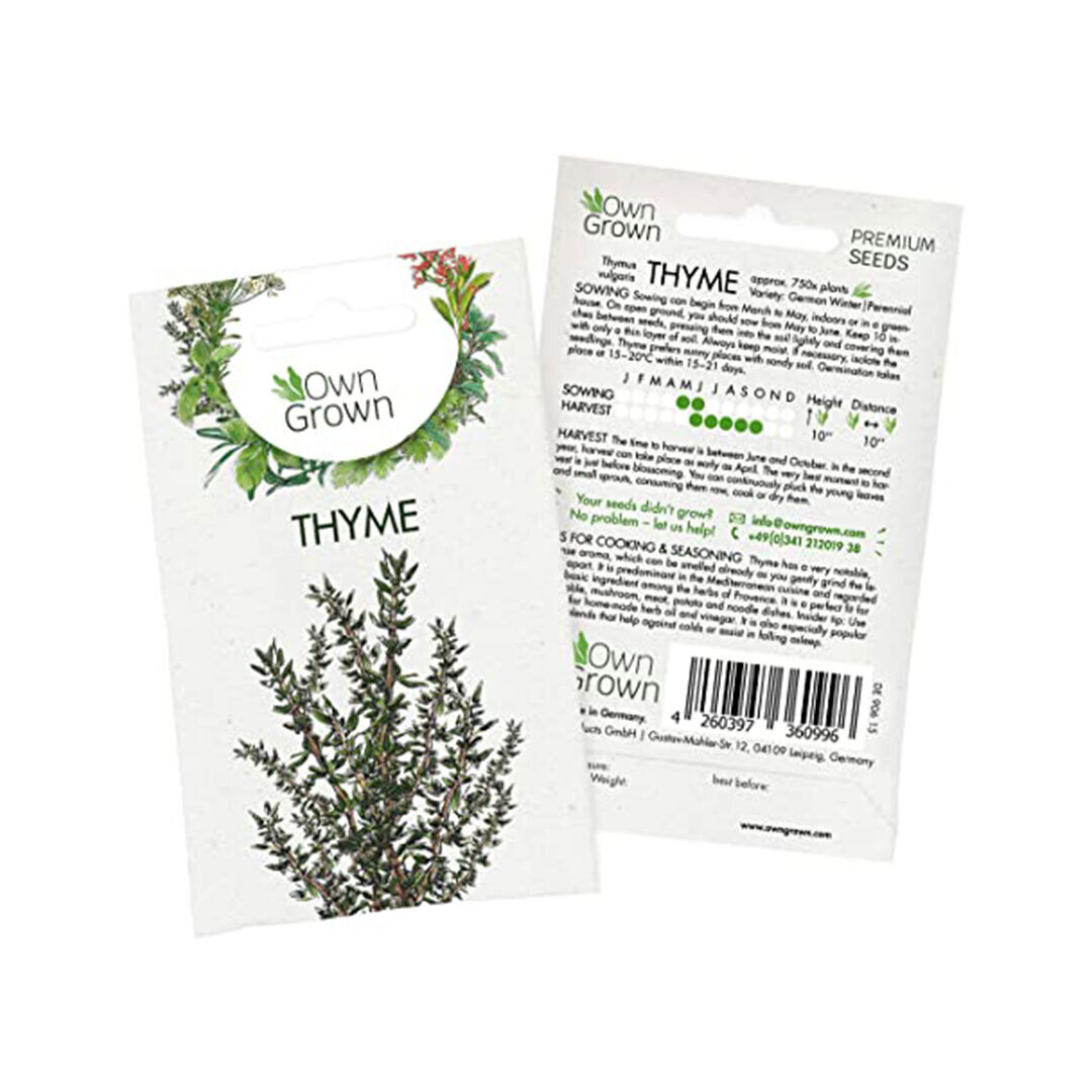 Thyme Seeds (Germany)