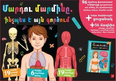 Մարդու մարմինը. ինչպես է այն գործում