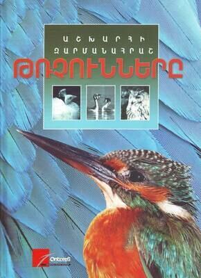 Աշխարհի զարմանահրաշ թռչունները