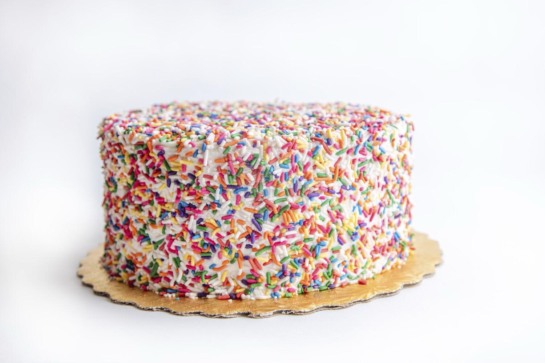 """Funfetti Cake 10"""""""
