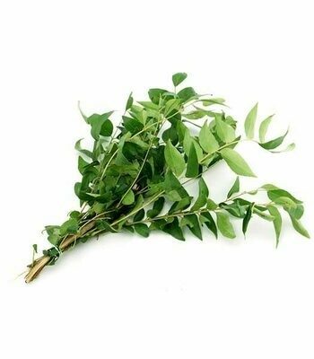 Curry Leaf ( Pkt )