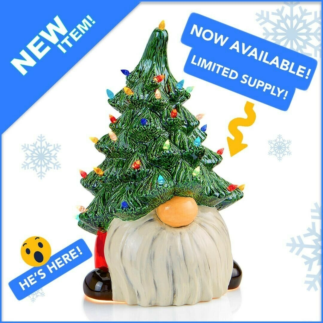 Pre-Order Light Up Christmas Gnome - includes Studio Fee