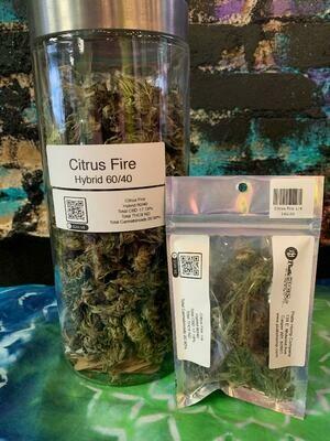 Citrus Fire 1/4