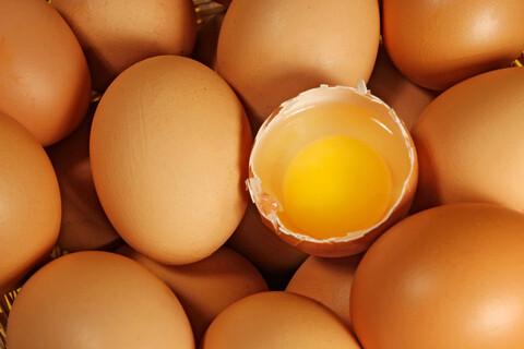 Tray Of 20 Fresh Free Range Eggs