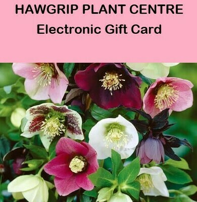 Hawgrip Plant Centre Electronic Gift Card