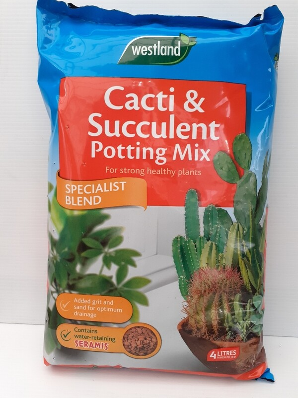 Cacti&succulent potting mix