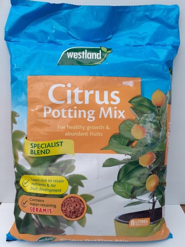 Citrus potting mix