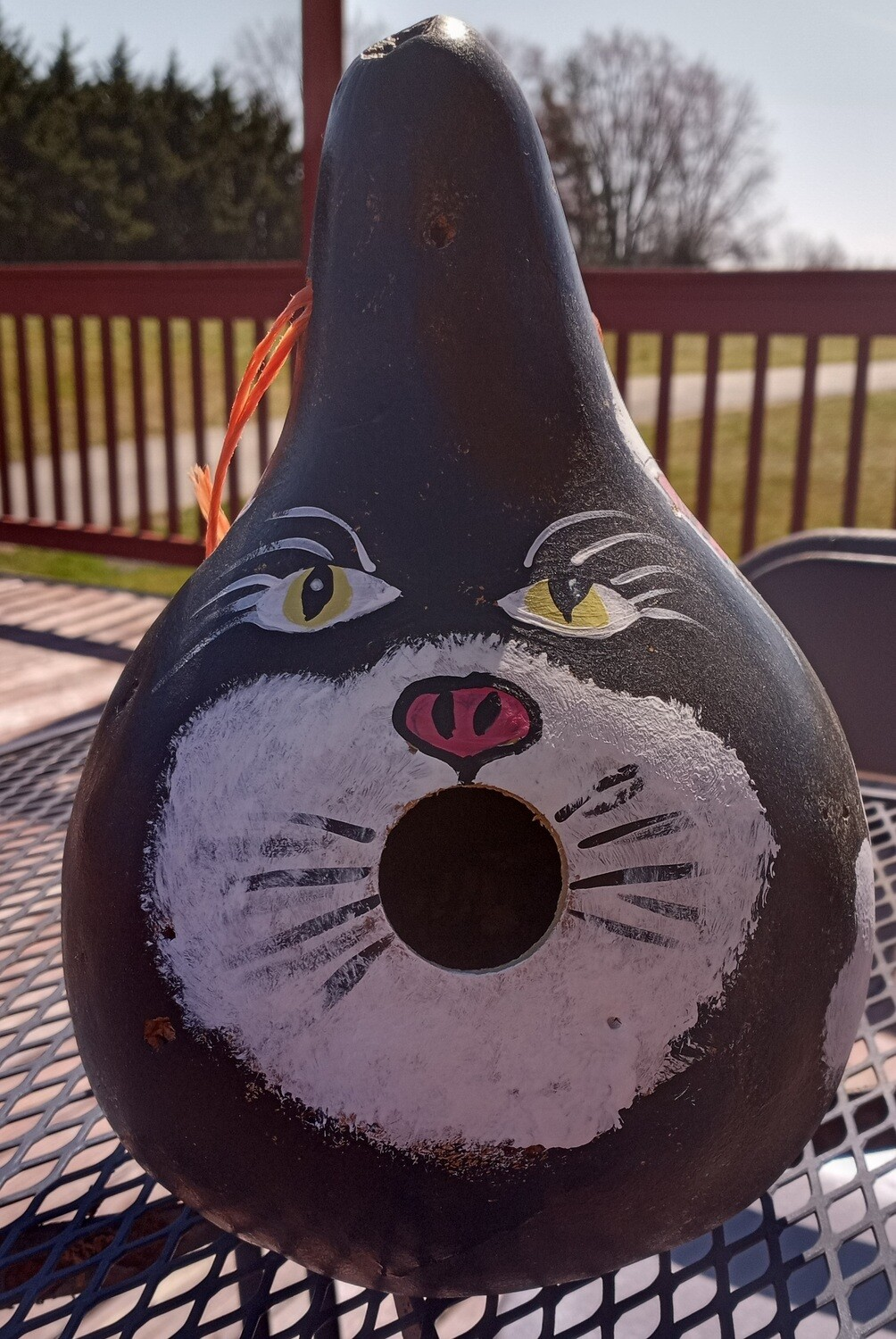 Birdhouse Gourd/Cat*May 30th*1pm