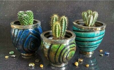 Succulent Raku Glazing Flower Pot*June 20th*11am