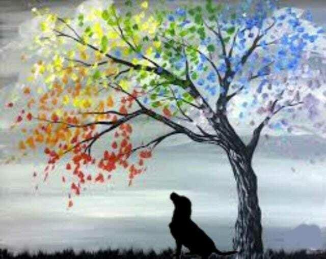 Paint your own Pet Workshop*June 6th*2pm