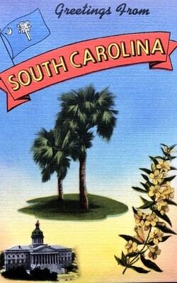 Greetings From South Carolina Vintage Postcard Palms