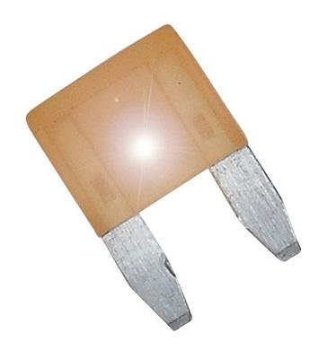 ASP Mini Blade Series - 5 Amp Fuse