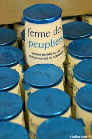 Yaourt nature peupliers par lot de 4 yaourts