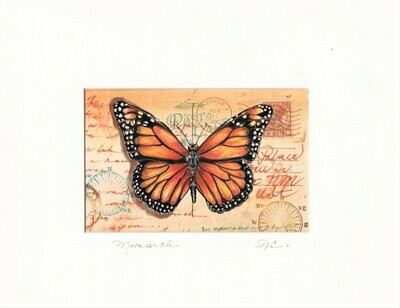 Vintage Postcard - Monarch Butterfly