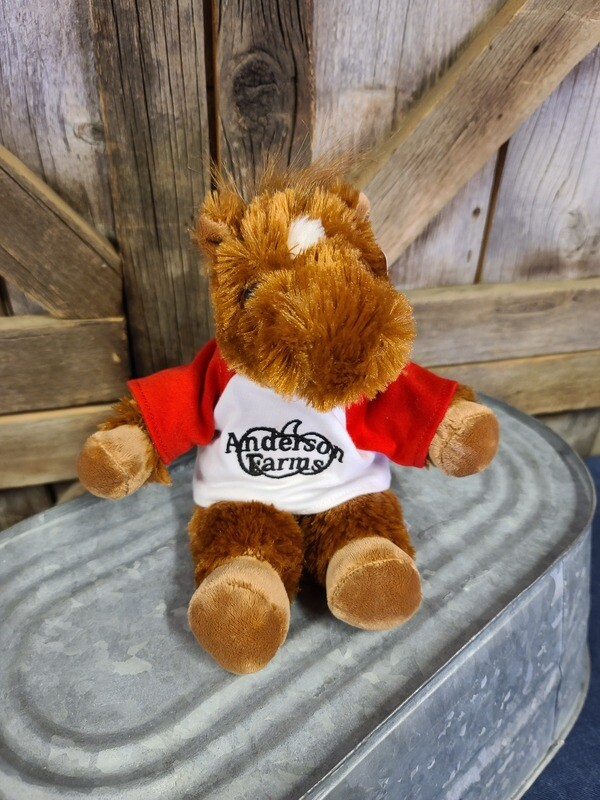 Pony with RED Anderson Farms Shirt