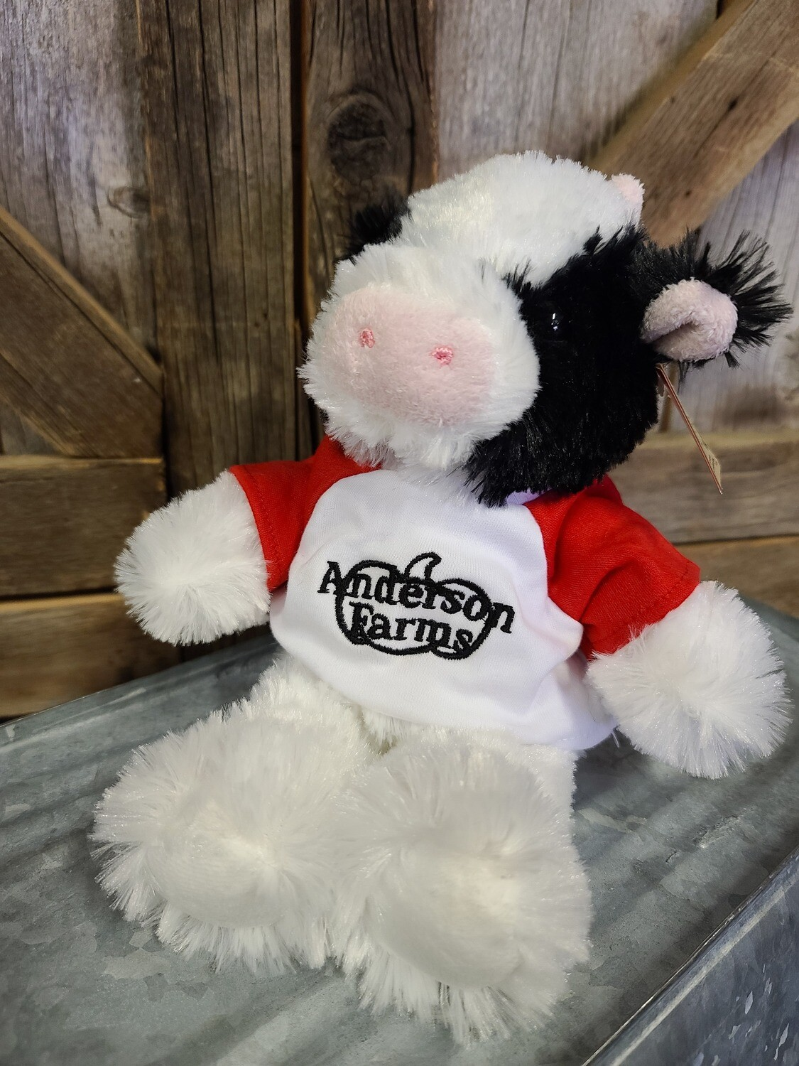Cow with RED Anderson Farms Shirt