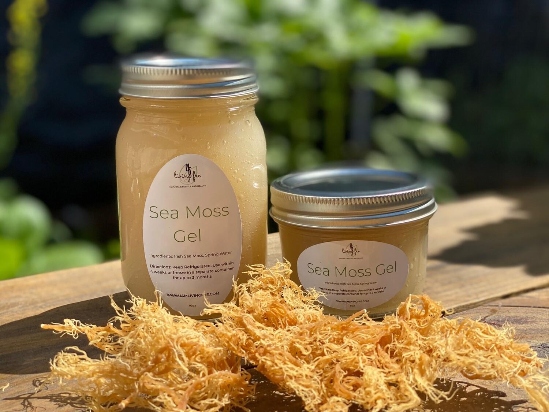 Sea Moss Gel