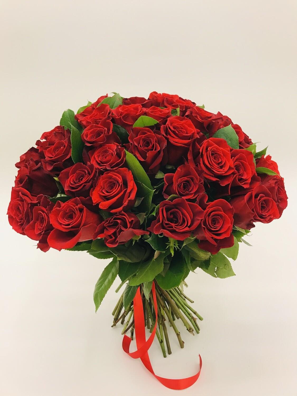 Роза красная Эквадор 51 шт.