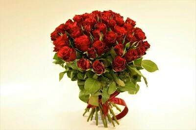 Роза Красная Кения 51 шт.