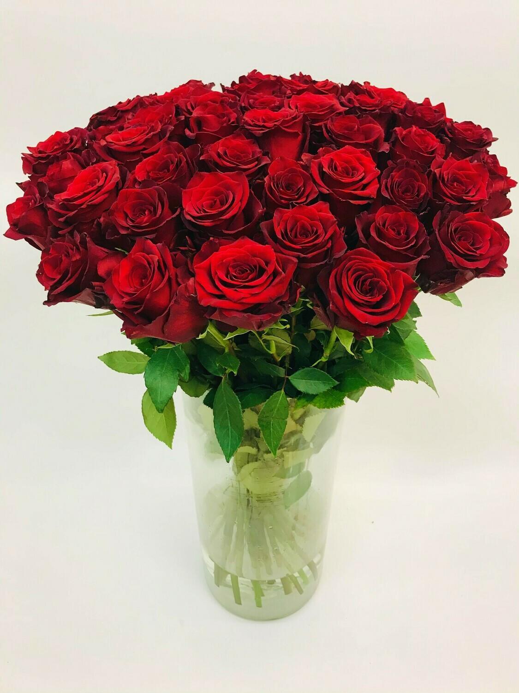 Роза красная Эквадор 70 см