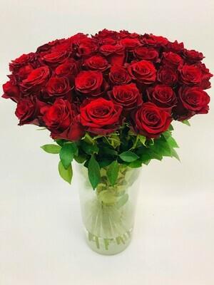 Роза красная Эквадор 70 см 25 шт