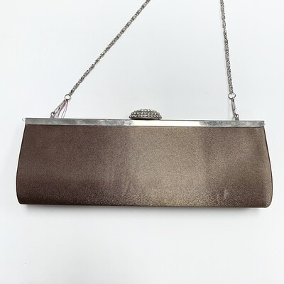 Taupe Silver Clutch