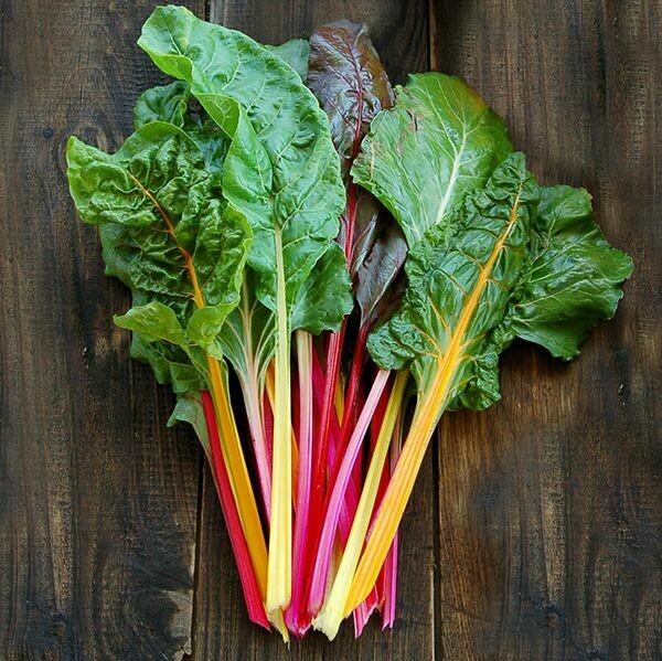Improved Rainbow Chard - Organic
