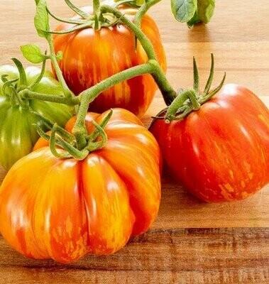 Get Stuffed Tomato - Organic