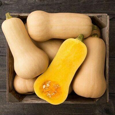 Butternut Squash - Waltham Organic