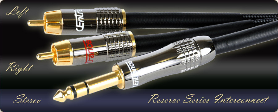 """Reserve Series Stereo 1/4"""" to Dual RCA cable"""