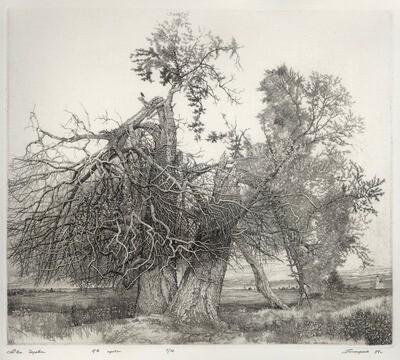 Два дерева/Two Trees/Deux arbres (ЗАРЕЗЕРВИРОВАНО/RESERVED)