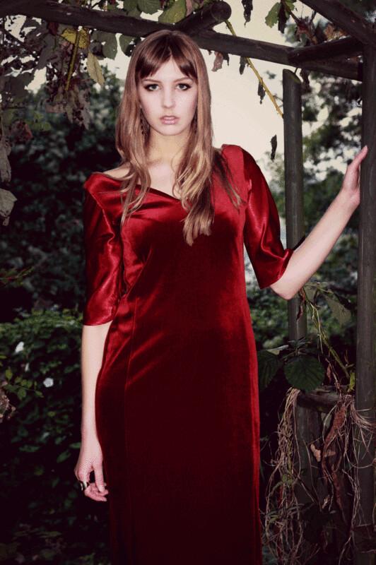 Violet - Velvet Panel Dress